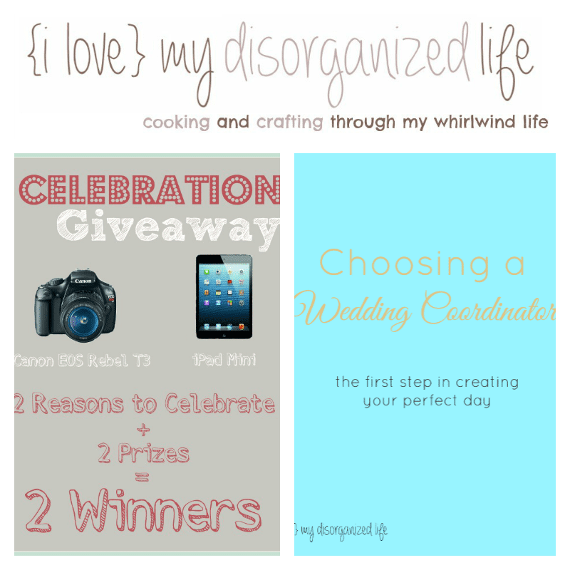 Weekly Recap Feb 19-25th {i love} my disorganizedlife