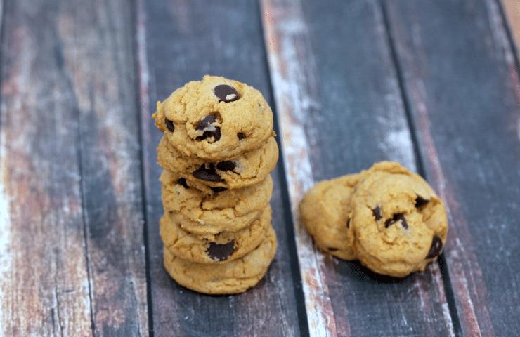 5 Ingredient Pumpkin Spice Chocolate Chip Cookies