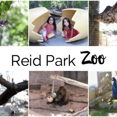 Reid Park Zoo Tucson
