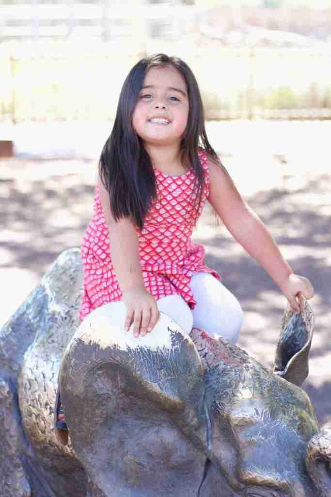 Reid Park Zoo Tucson is a great place for kids and adults alike to experience animals from all over the world.