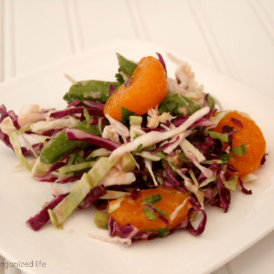 Cabbage Salad with Garlic Ginger Dressing #FlavorsOfSummer #VirtualPicnic
