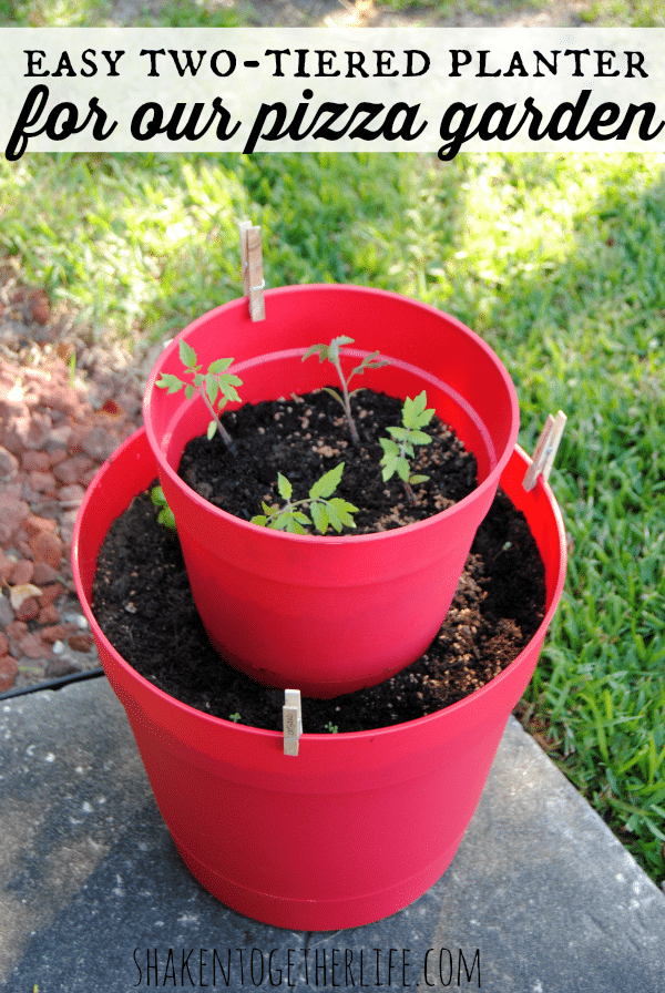 easy-two-tiered-planter-pizza-garden