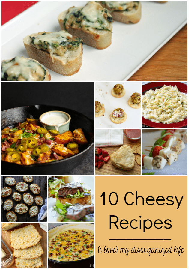 Are you a cheese lover? Then you need to try these 10 cheesy recipes!