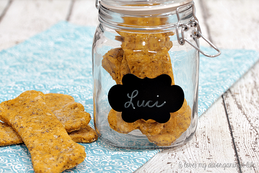 Everyone loves pumpkin, even dogs, just ask mine! They went crazy for these healthy pumpkin dog treats and yours will, too!