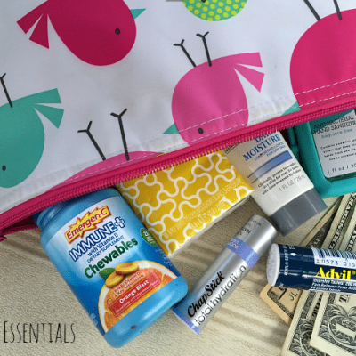 Today I'm sharing the top 5 purse essentials that you should be using year-round!
