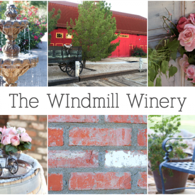 The Windmill Winery is tucked away in rural Florence, AZ. Come with me as I explore a section of the property.