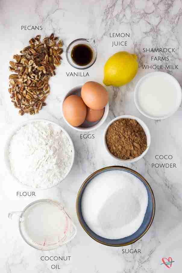 Flat lay of coconut fudge cake ingredients